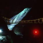 奥久慈袋田「冬の滝紀行」 袋田の滝ライトアップ