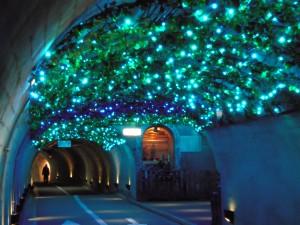 袋田の滝のライトアップ幻想的な世界♪