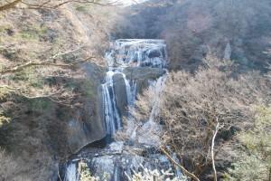 滝が凍り始めました!