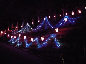 袋田の滝「ライトアップ」と「ランプシェード」光の演出
