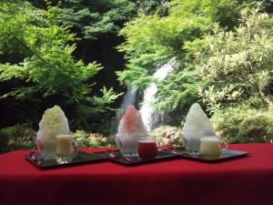 昨年大好評!!『月待の滝で奥久慈天然かき氷「氷瀑けずり」プラン』